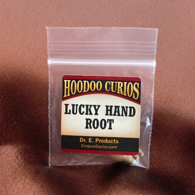 Lucky Hand Root, Small (Salep Root)